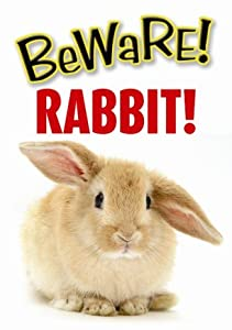 Beware Rabbit Sign