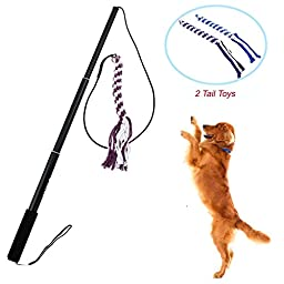 Wellbro Interactive Dog Extendable Teaser Wand, with 2 Rope Chew Tail Toy, Best Training and Excercing Teaser Toys for Small Medium Large Dogs (Small, Black)