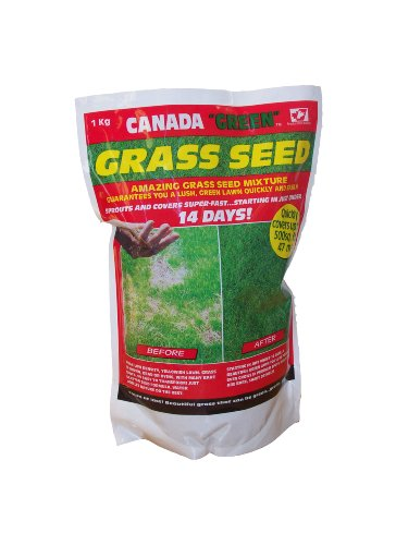 canada-green-3604-grass-seed-1kg