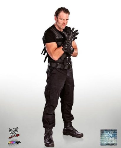 Dean Ambrose (Shield) - WWE 8x10 Glossy Photo 2014 posed (Dean Ambrose 2014 compare prices)