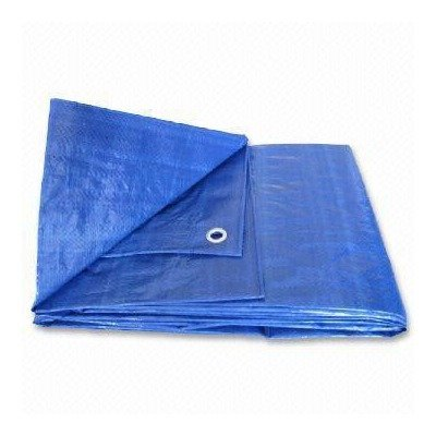 Canopy Tent Boat RV or Pool Cover Tarp Size: