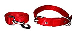 Petsplanet High Quality Nylon Adjustable Collar & Leash Large RED - 1.25 Inch