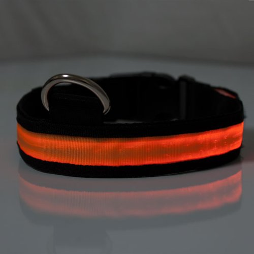 Elixir LED Flashing Pet Dog Cat Safety Collar Pet Accessory - Orange, Size Small (14.2