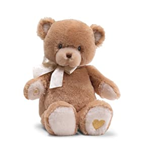 "Gund Feature Plush Recordable 13"" Animated Teddy by Gund"
