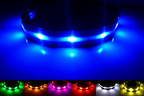 NEW - GoDoggie-GLOW - USB Rechargeable LED Dog Safety Collar - 7 Colors & 4 Sizes - Intro Offer - Super-Bright LED's Glow & Flash - Connects to Devices to Recharge - No Batteries Required - Great Fun & Improved Dog Safety - Blue Medium