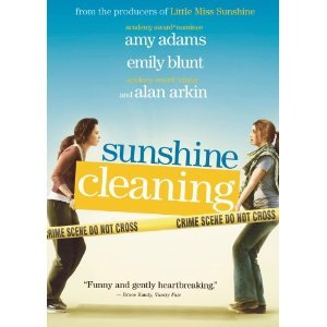 Sunshine Cleaning : Widescreen Edition