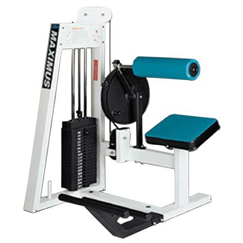 Maximus Fitness MX524 Back Extension Commercial