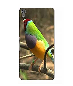 Snazzy Bird Printed Colorful Hard Back Cover For Sony Xperia XA Dual