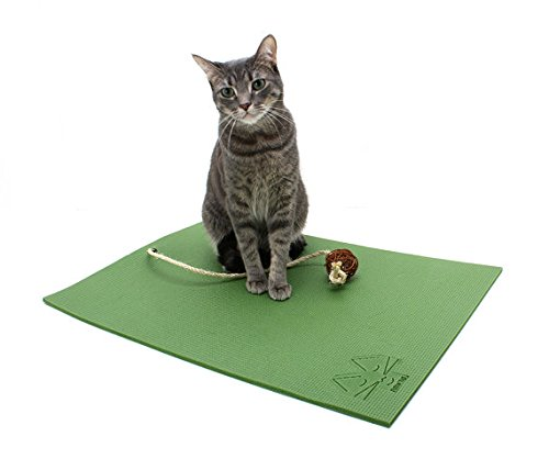 Cat Yoga Mat with Cat Toy. Cat Scratcher, Bed, Activity Play Mat with Catnip Toy (Green)