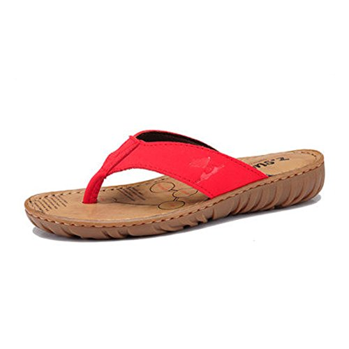 Pantoufles respirant de nouveau féminin/Tongs femme été/Quartiers de femmes sandales/Sandales et pantoufles