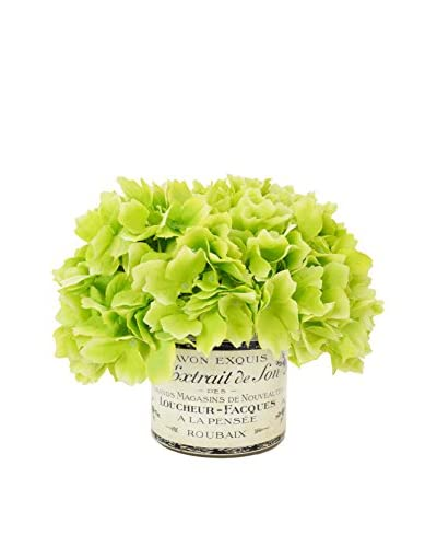 Creative Displays Green Hydrangea in a French Label Vase