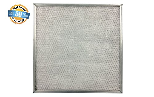 20x20x1 Electrostatic Washable Permanent A/C Silver Steel Frame + 1 Filter Fresh Air Filter Pads Scented