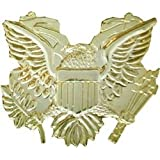 US Eagle Lapel Pin or Hat Pin