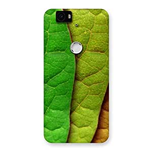 Cute Leaf Pattern Multicolor Back Case Cover for Google Nexus-6P