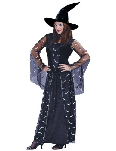 Celestial Sorceress Adult Md-Lg Halloween Costume