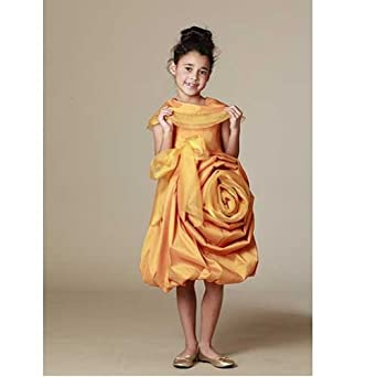 Kid Cute Ture Clothes Shantang Organza Dress