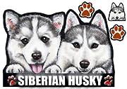 犬ステッカー シベリアンハスキー5 シール