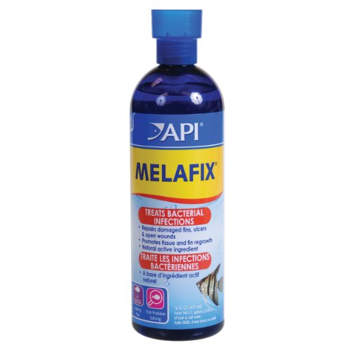 API-17590-Melafix-16-fl-oz
