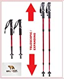 Hiking Poles Trekking Sticks by Big Bear Outdoors (Red)