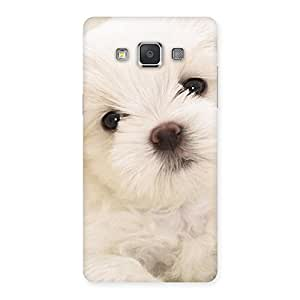 Stylish Cute Pup White Back Case Cover for Galaxy Grand 3
