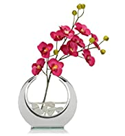 Pink Orchids with Mini Circle Vase