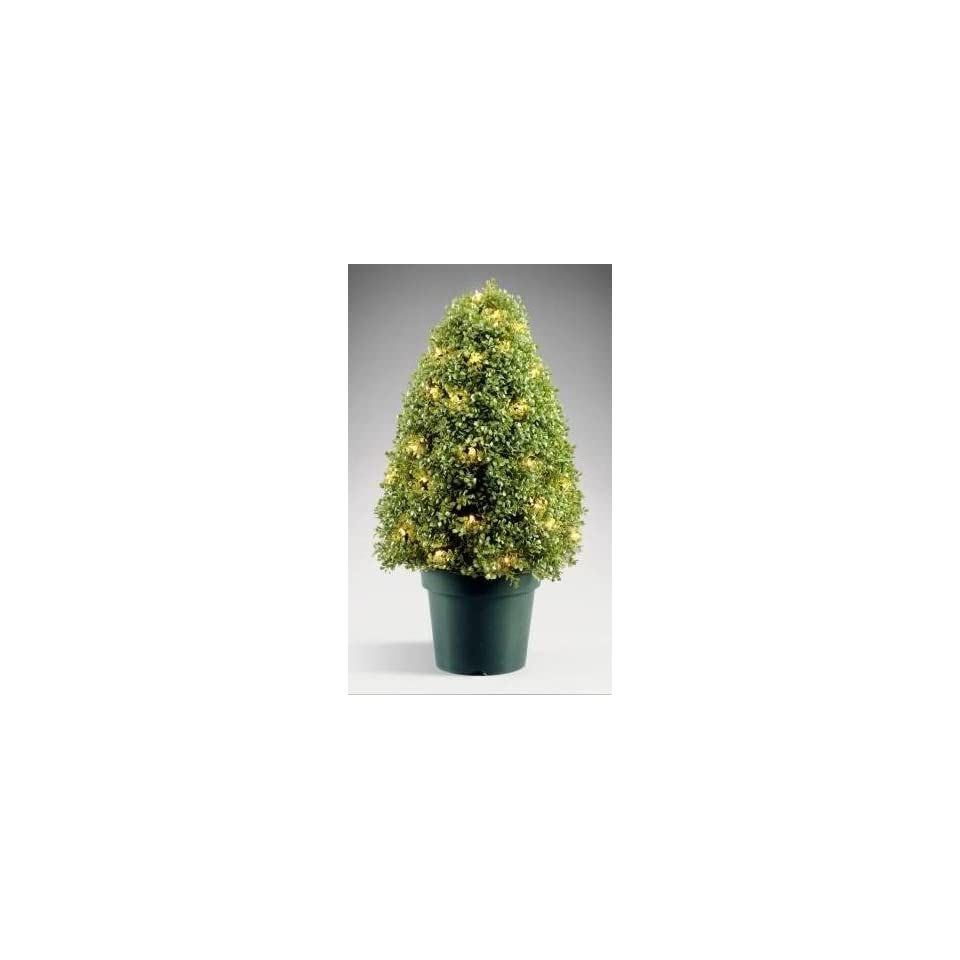 National Tree Company LBX 300 42 42 Inch Boxwood Tree with 100 Clear Lights in Dark Green Round Plastic Pot