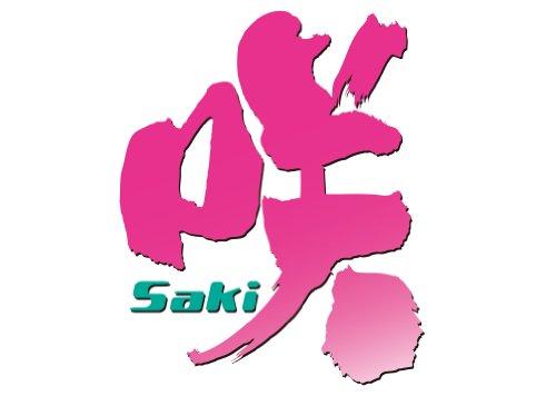 咲-Saki- (12) (ヤングガンガンコミックス)
