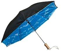 Stromberg Brand Blue Clouds & Sky Folding Umbrella