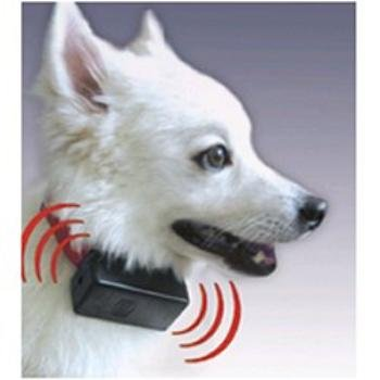Bark Control Collar - As Seen on TV