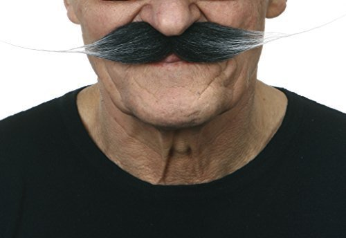 Old Dali moustache