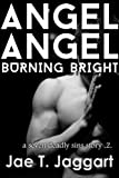 img - for Angel Angel, Burning Bright (A Seven Deadly Sins Story Book 2) book / textbook / text book