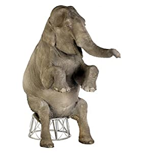 Asian Elephant - Advanced Graphics Life Size Cardboard Standup