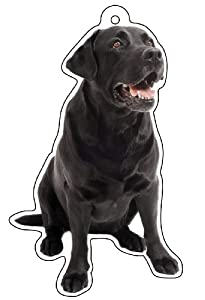 LittleGifts Black Labrador Air Freshener