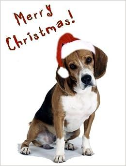 Pet Star Christmas Cards - Beagle in Santa Hat: Pet Star