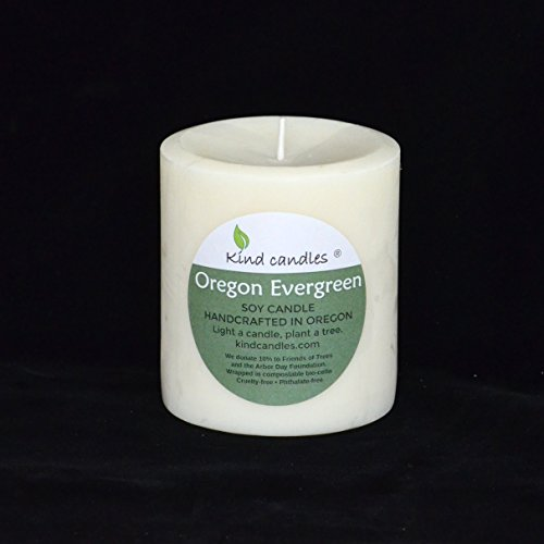 kind-candles-oregon-evergreen-3-1-2-x-3-soy-pillar-candle