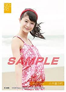 Amazon.com: SKE48: Shiori Ogiso - Sleeve Collection by ensky: Toys