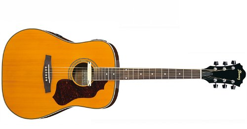 Ibanez SGE120-ATN Dreadnought