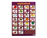 echange, troc  - Learn the Alphabet Wall Chart