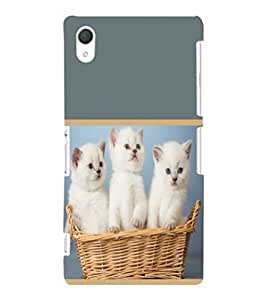printtech Cute Kittens in Basket Back Case Cover for Sony Xperia Z2::Sony Xperia Z2 L50W D6502 D6503