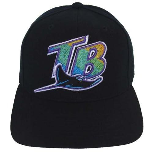 Amazon.com: Tampa Bay Devil Rays Vintage Retro Snapback Cap Hat Black