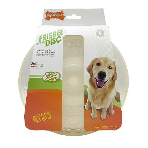 Pet Supplies : Pet Flying Discs : Nylabone Go!Active Large Frisbee
