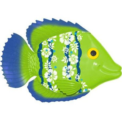Rainbow Reef Fish (colors vary)