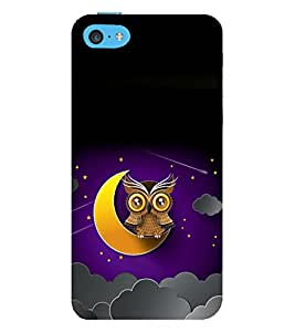printtech Owl Moon Sky Back Case Cover for Apple iPhone 5S