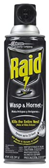 Raid Wasp   Hornet Killer 33 Spray 14-Ounce