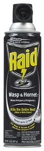 Raid Wasp & Hornet Killer 33 Spray, 14-Ounce