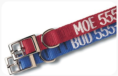 Custom Embroidered Nylon Dog and Cat Collar