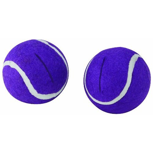 The Original Genuine Walkerballs, Purple, One Package Of Two Personal Healthcare / Health Care front-598496