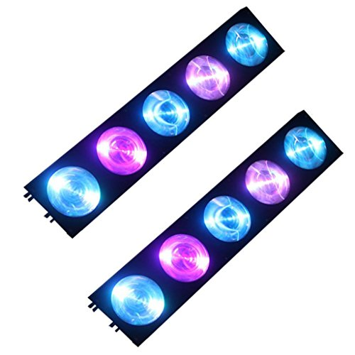 Yiscortm Stage Lighting Cree Led Light 5Lens 10W Rgb 3In1 Dmx512 Matrix For Xmas Christmas Birthday Home Garden Party Club Disco Effect (Pack Of 2)