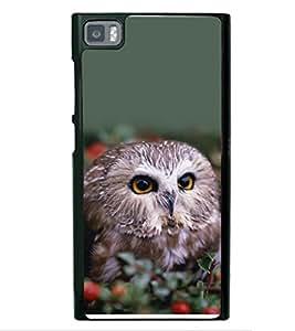 printtech Cute Bird Owl Back Case Cover for Xiaomi Redmi Mi3::Xiaomi Mi 3