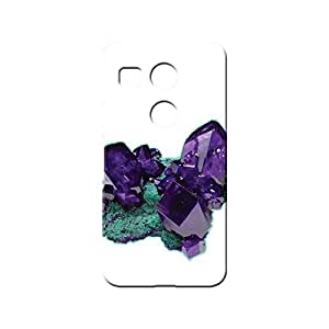 BLUEDIO Designer 3D Printed Back case cover for LG Nexus 5X - G5736